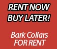Dog Bark Collars for Rent