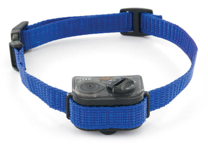 Citronella Dog Collars For Small Dogs