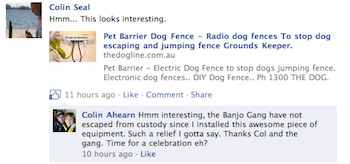 Dog Fence Reviews