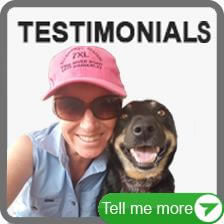 More Facebook Bark Collars Testimonials