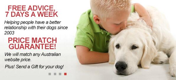 Dog Bark Collar Dog Training Collar Electric Dog Fence