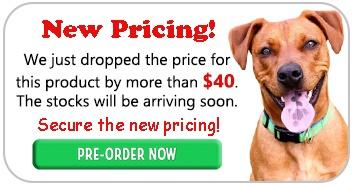 SportDog Remote Trainer Discount Sale