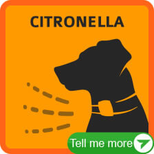 More Citronella Spray Bark Collars