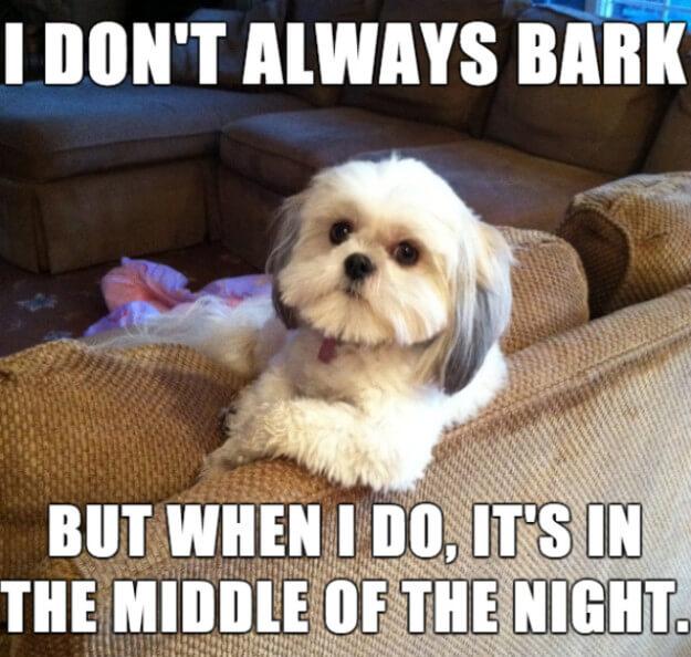 nuisance barking meme