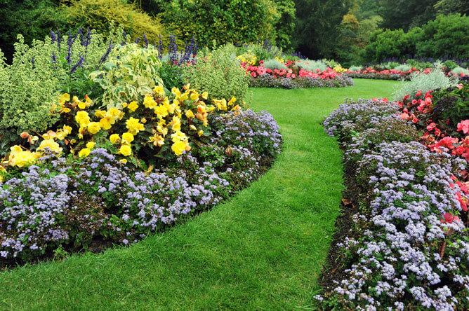 Expensive garden beds
