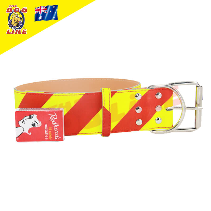 Dangerous Dog Collar for Large Dogs