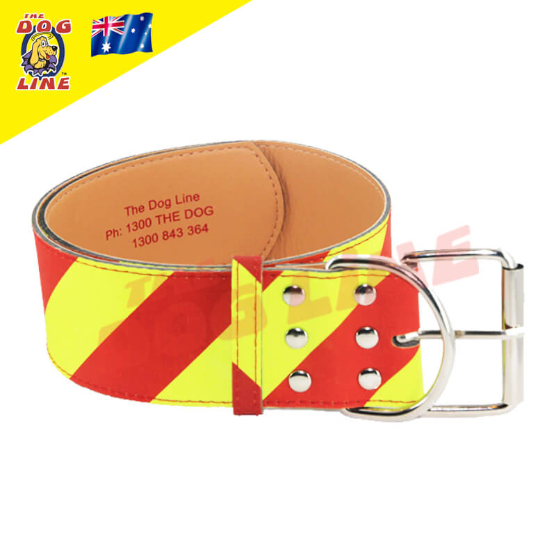 Dangerous Dog Collar NSW
