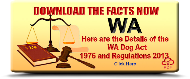 Download Dangerous Dogs Regulation in WA Fact Sheet Here