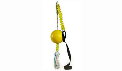 Home Alone Bungee Ball Dog Toy