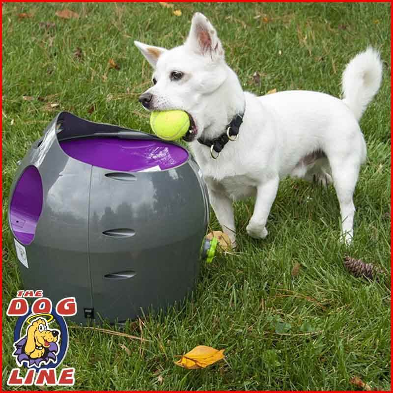 PetSafe Automatic Ball Launcher PTY17-15849