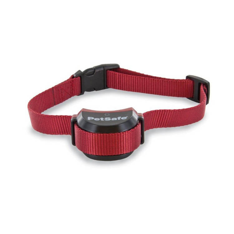 petsafe stay and play stubborn receiver collar
