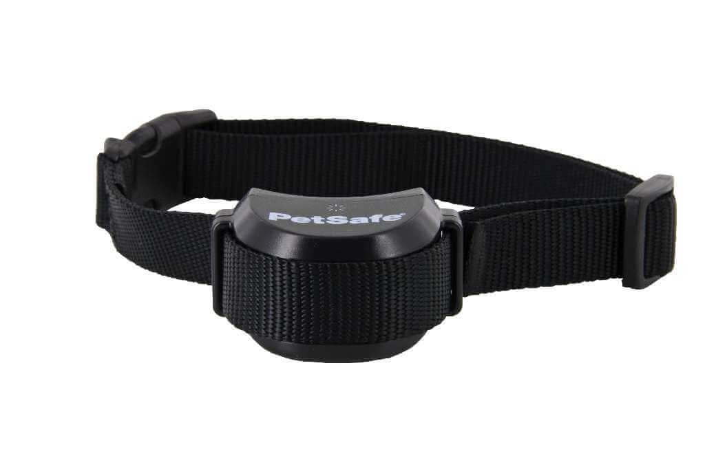 petsafe stay and play standard receiver collar