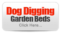 Learn More - Dog Digging Garden Beds