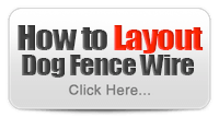 Learn More - How to Layout Dog Fence Wire?