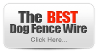 The Best Dog Fence Wire