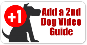 Add a Second Dog Video Guide