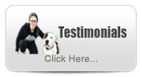 Testimonials About The Dog Line