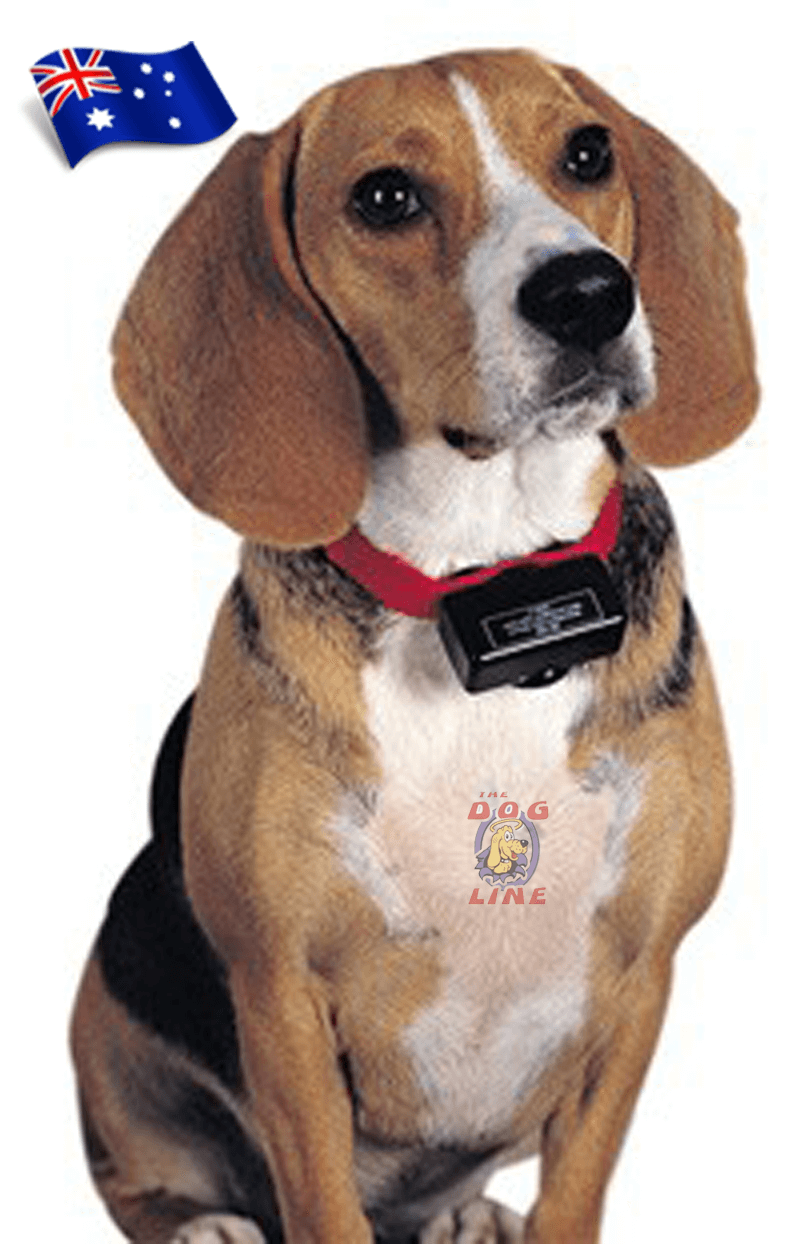 An easy to use dog bark collar that corrects dog's nuisance barking