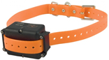 Test Dog Training Collar 4