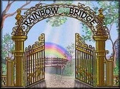 The Rainbow Bridge Gate