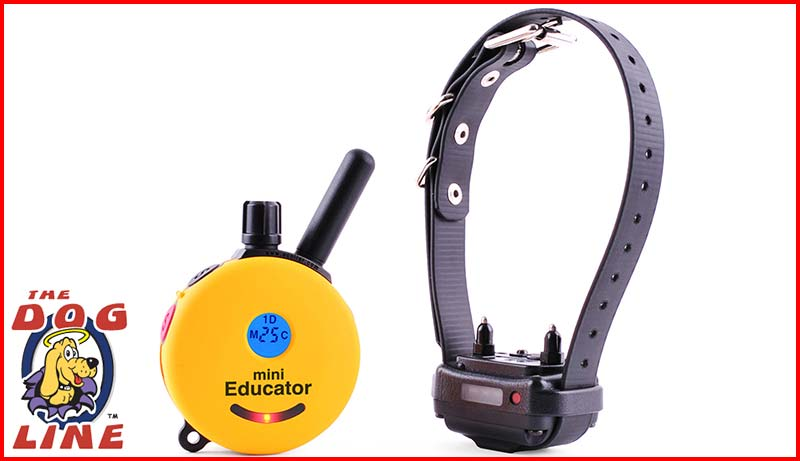 Educator Remote Dog Trainer ET-300TS Mini