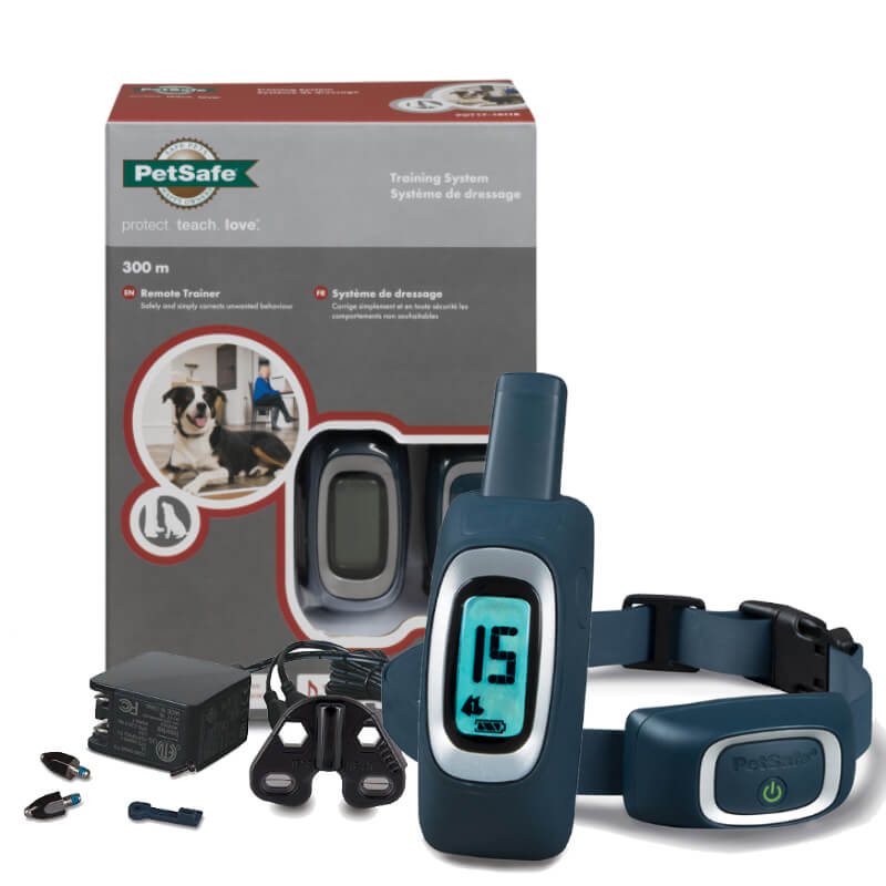 start your dog's training with remote dog trainers