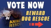 Reward Dog Rescue